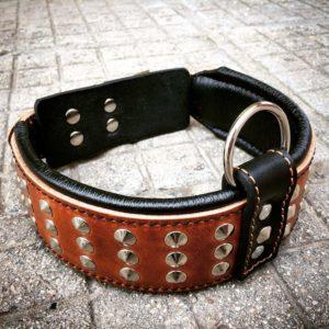 Bestia Star Hundehalsband Leder mit Nieten und Innenpolsterung 6,5 cm