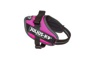 Julius-K9, 16IDC-DPN, IDC-Powergeschirr, Dunkel Pink
