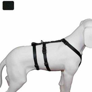 Sicherheitsgeschirr Hund Feltmann
