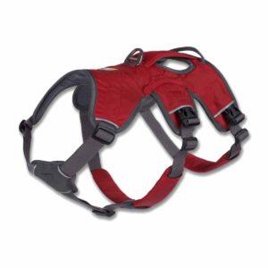 Sicherheitsgeschirr Hund Ruffwear