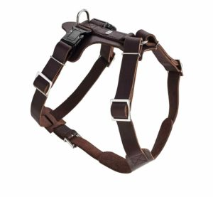 Hunter Hundegeschirr Leder